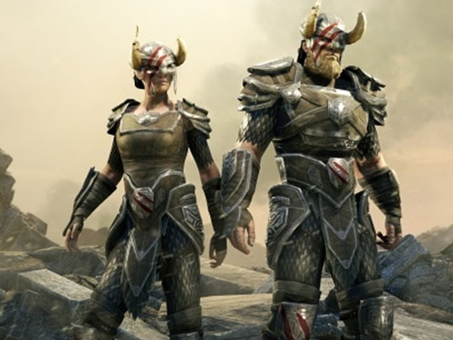 Nord Hero Armour now on ESO store